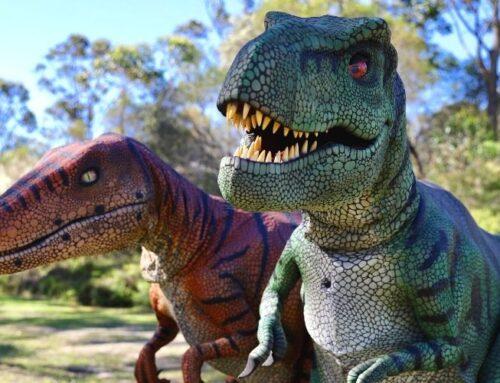 Jurassic Zoo – Australian Reptile Park Summer School Holidays 2020/21