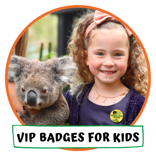 VIP Badges for Kids