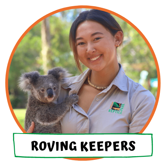 Roving Keepers