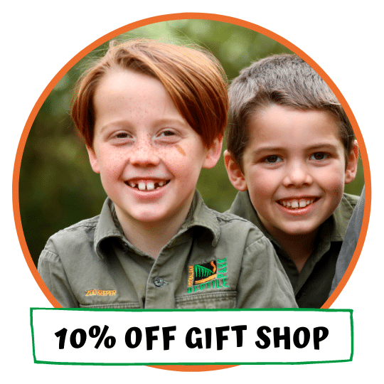 10% Off Gift Shop