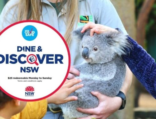 Dine & Discover Vouchers at the Australian Reptile Park
