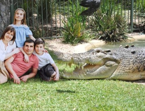 Get up close with Elvis the Crocodile! Elvis Encounters available now!